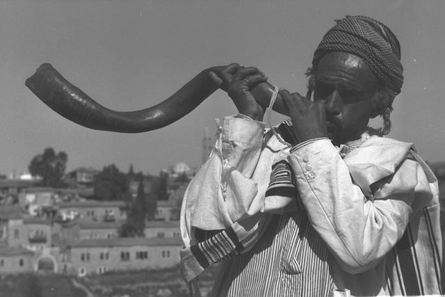 shofar again